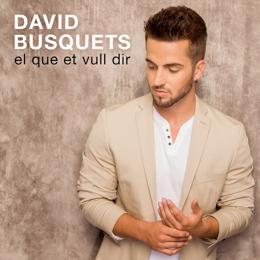 David Busquets - El que et vull dir