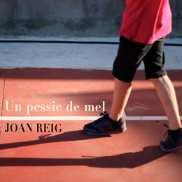 Joan Reig - Un pessic de mel